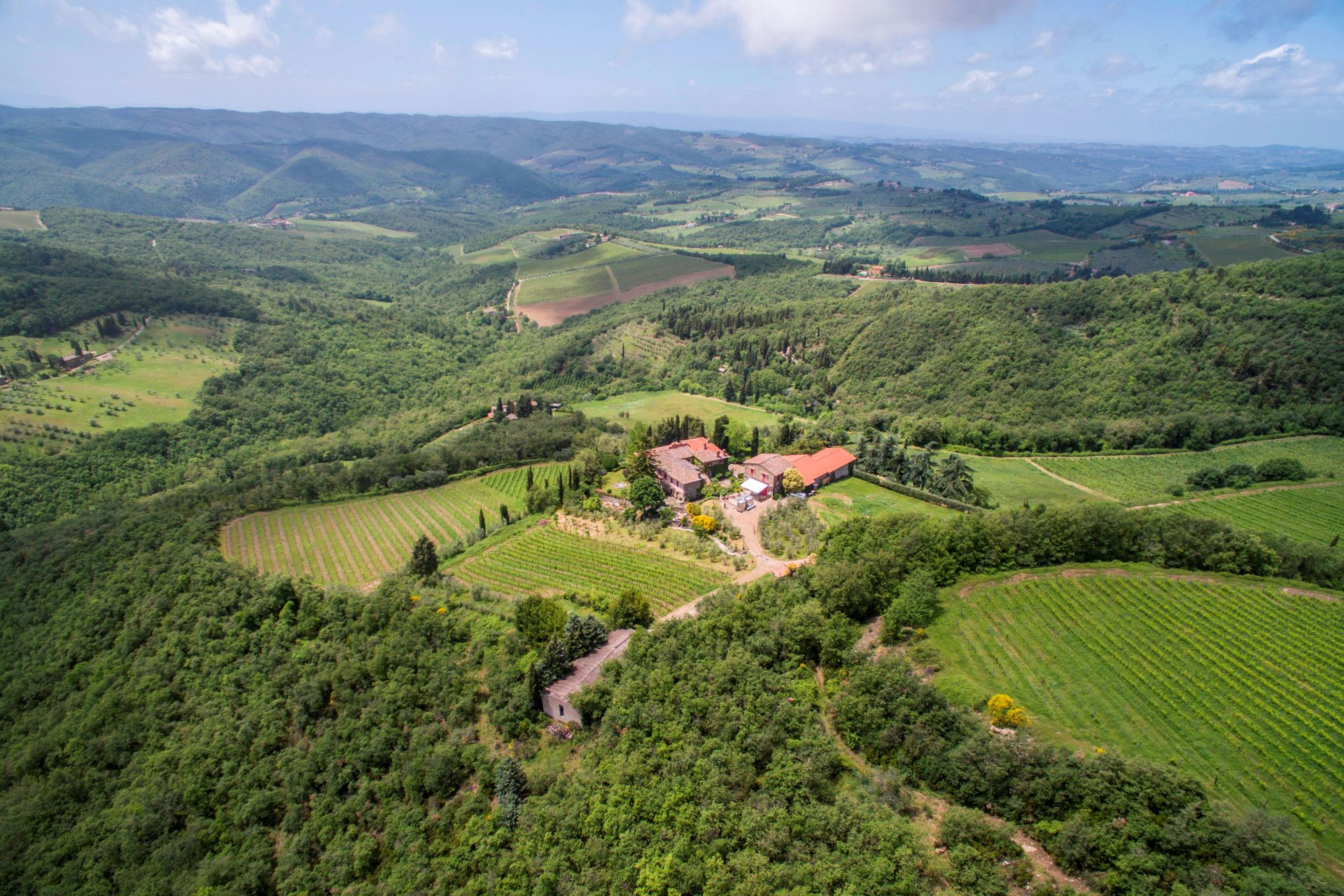 MULTI-AWARD WINNING WINERY FOR SALE CHIANTI CLASSICO